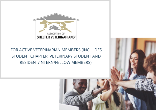 member-benefits-new2